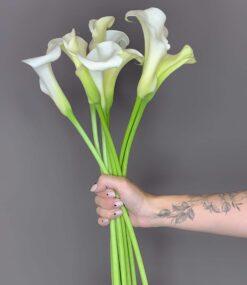 באנץ' פרחים